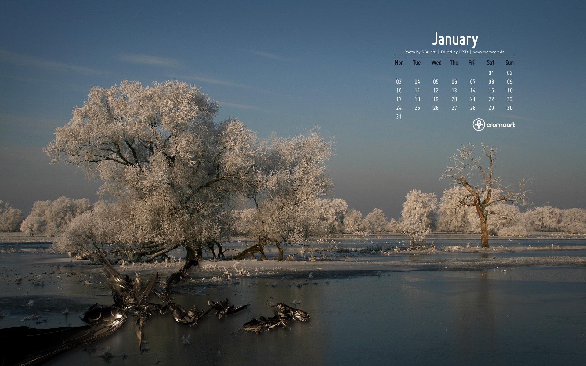 january 2011 desktop calendar wallpaper 277378